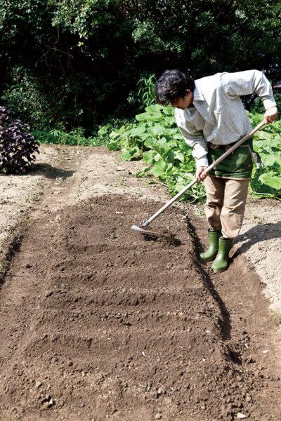 土をならす