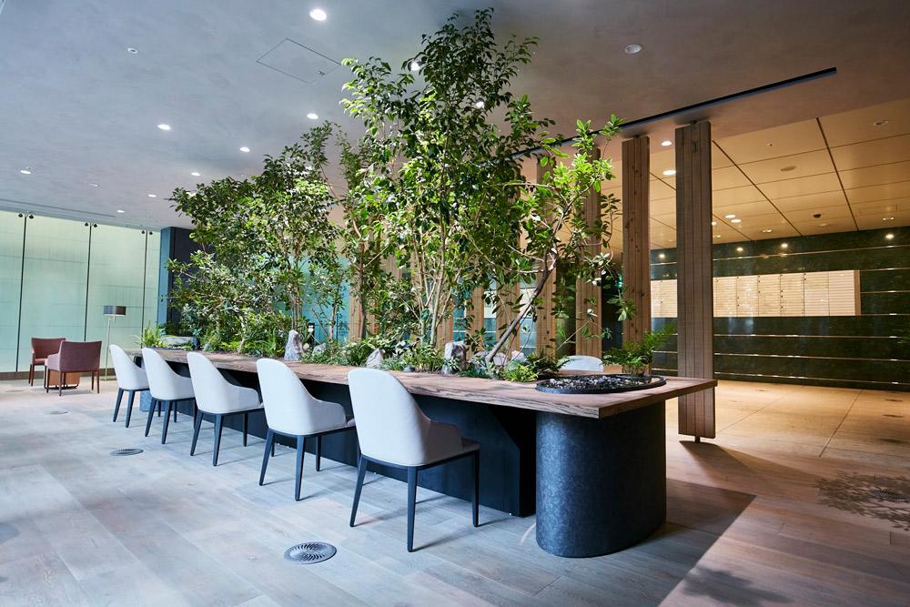 愛宕グリーンヒルズのラウンジ植栽(室内にも愛宕山の自生種を使用