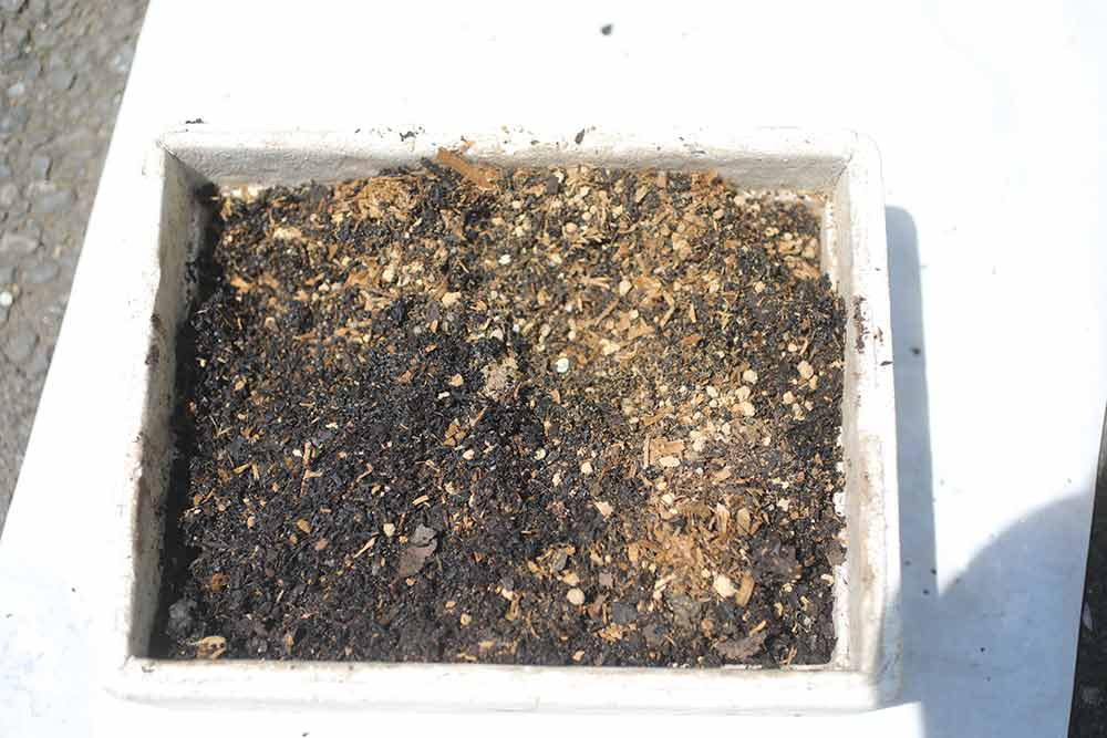 ジャガイモの土作り