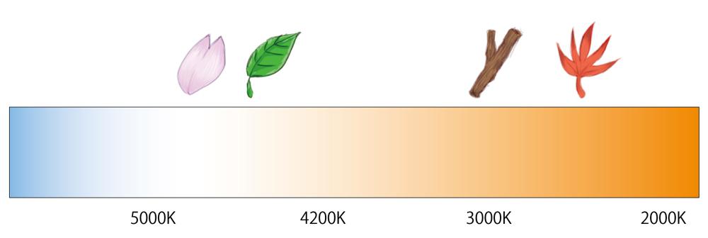 電球色(2700K)~昼白色(5000K)