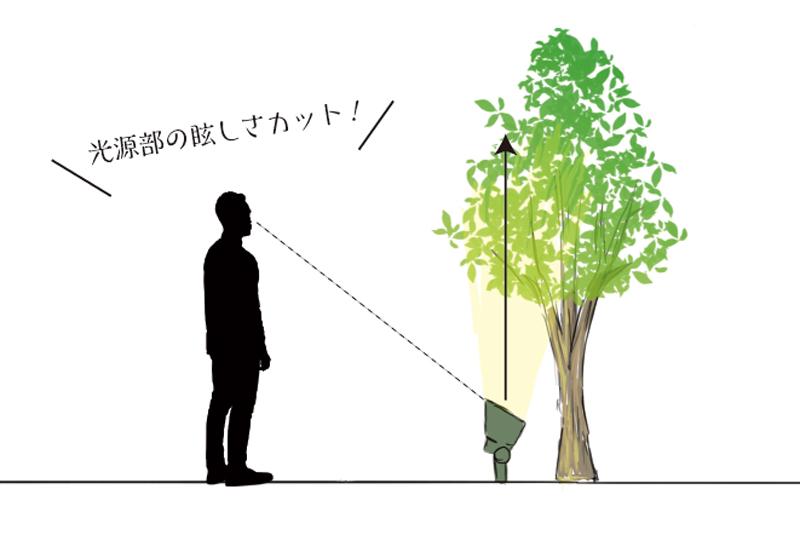 樹木の根元に照明器具を設置
