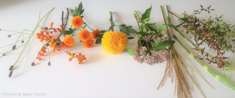 お月見のキクのアレンジ花材