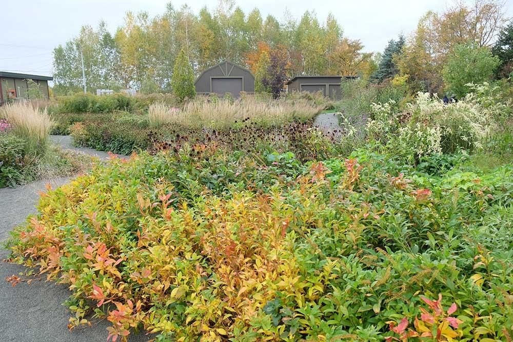 上野ファームの秋のガーデン