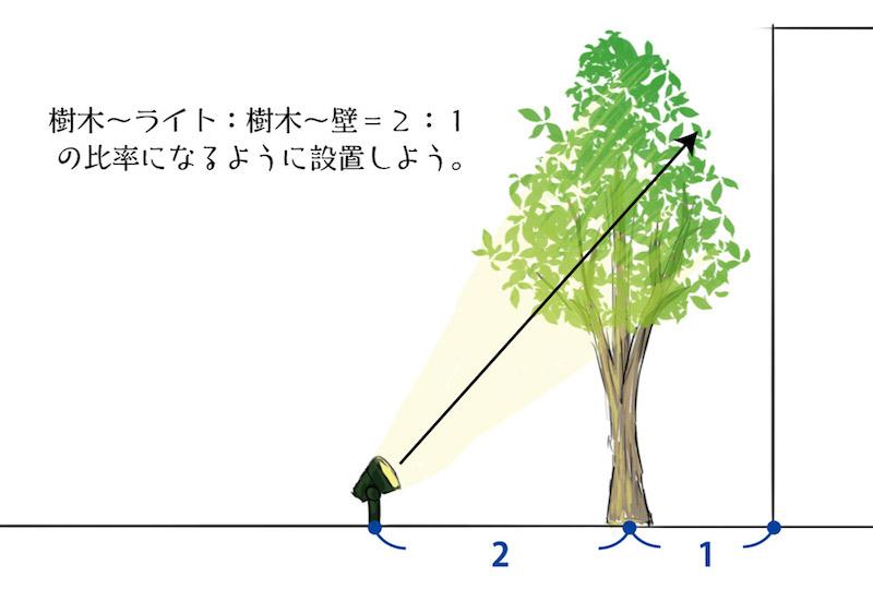 【樹木からライトの距離】:【壁面から樹木の距離】=2:1の比率でライトを設置