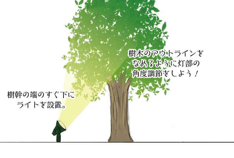 樹木のアウトラインに沿ってライトアップ