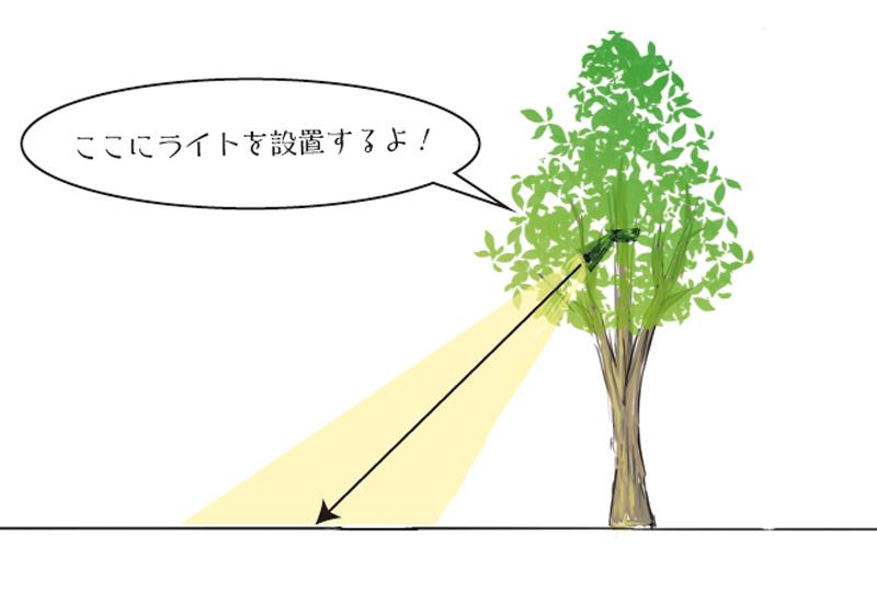 樹木の影を地面に落とすライトアップテクニック
