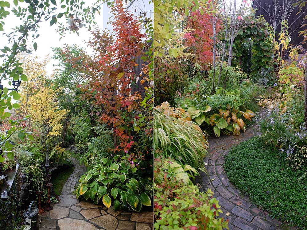 秋の北海道ガーデン