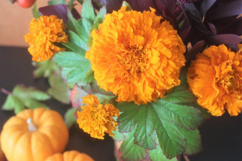 マリーゴールドのハロウィンアレンジ
