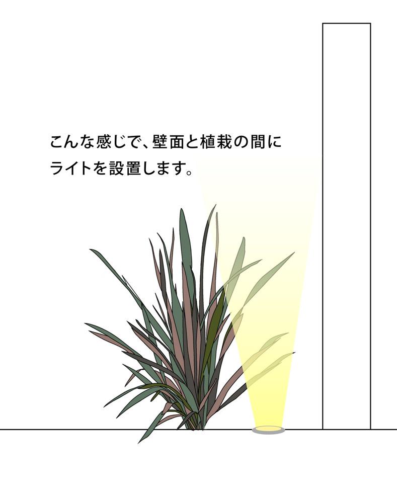 壁面と植栽の間にライトを設置
