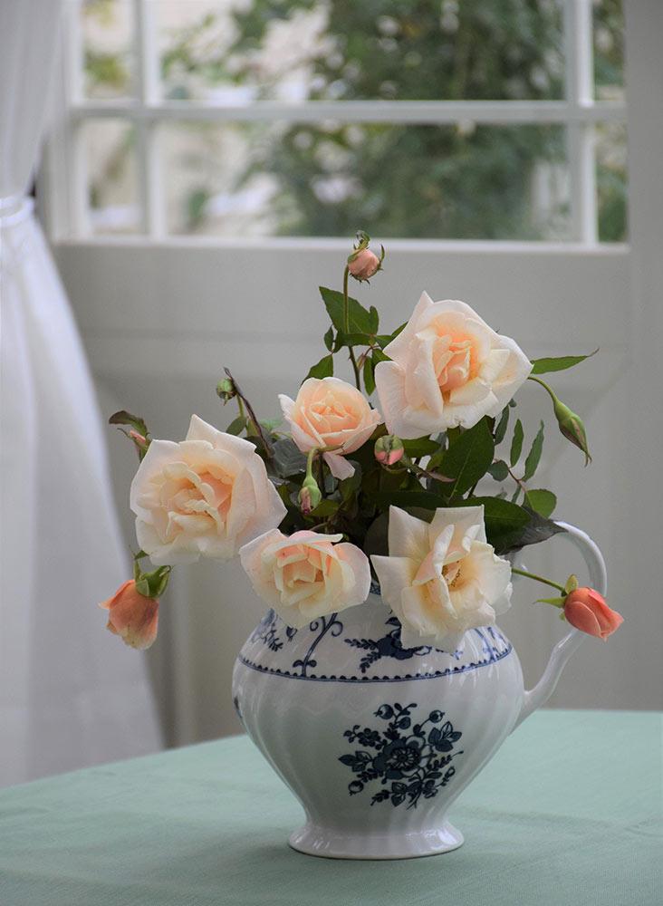 花瓶に挿した'サフラノ'