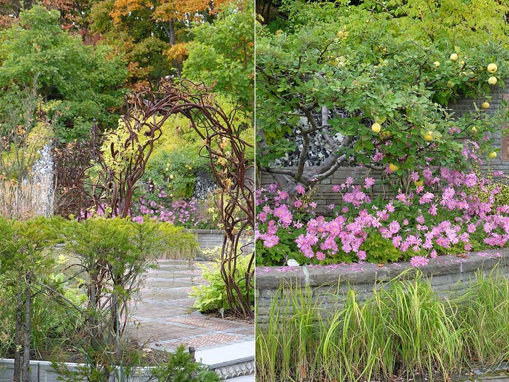 秋の銀河庭園