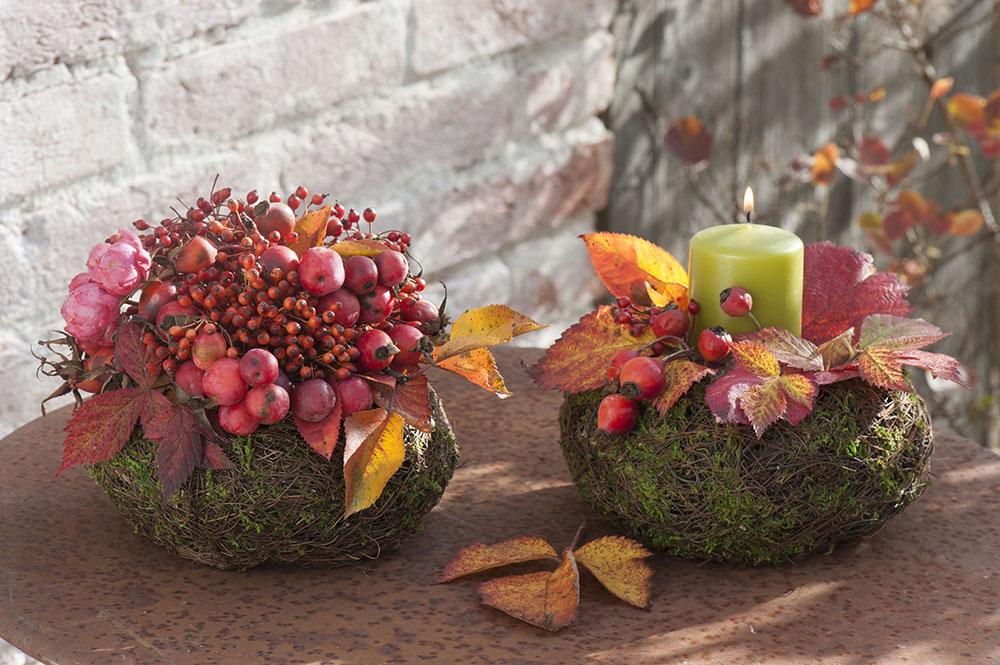 苔玉の秋飾り