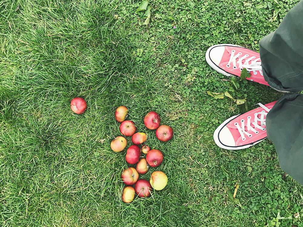 イギリスのリンゴ