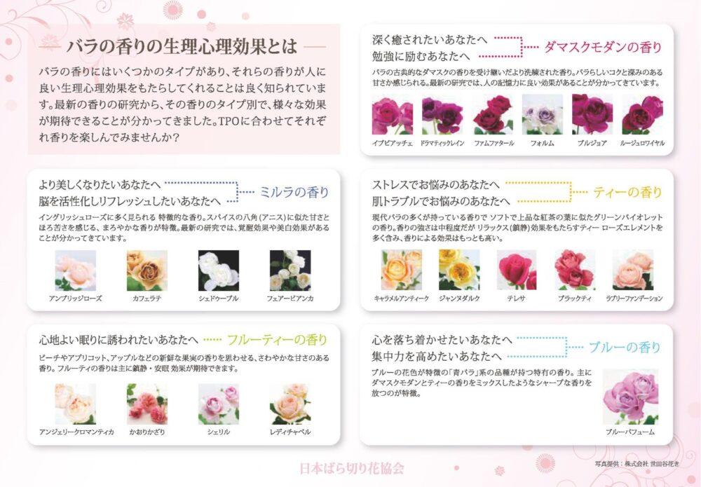 バラの香りの系統