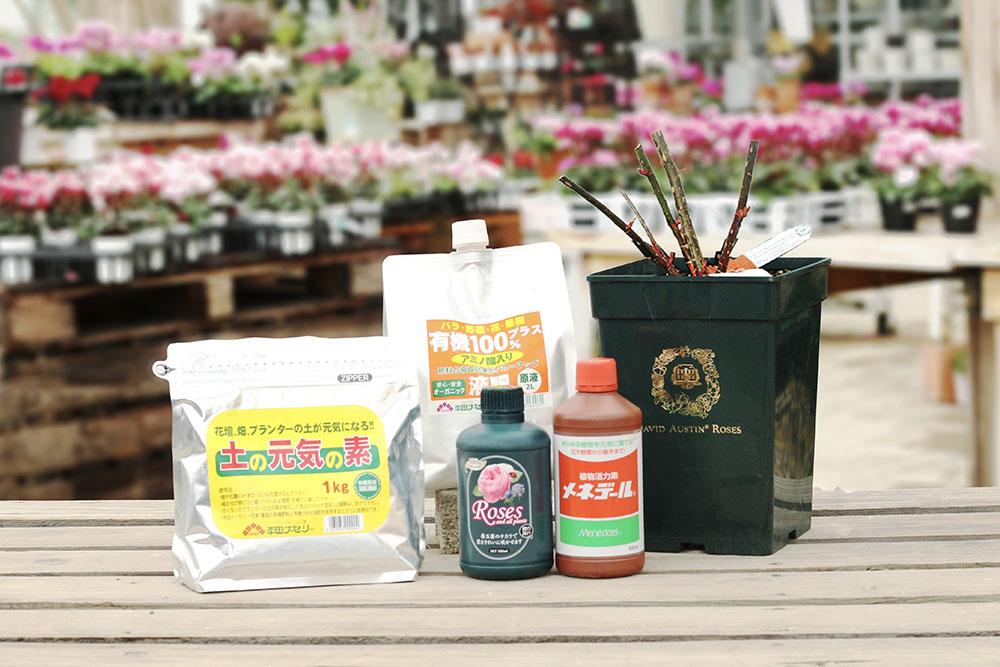 庭植えセット