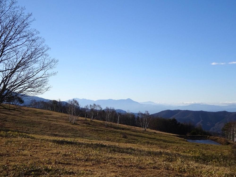 遠く蓼科山を望む