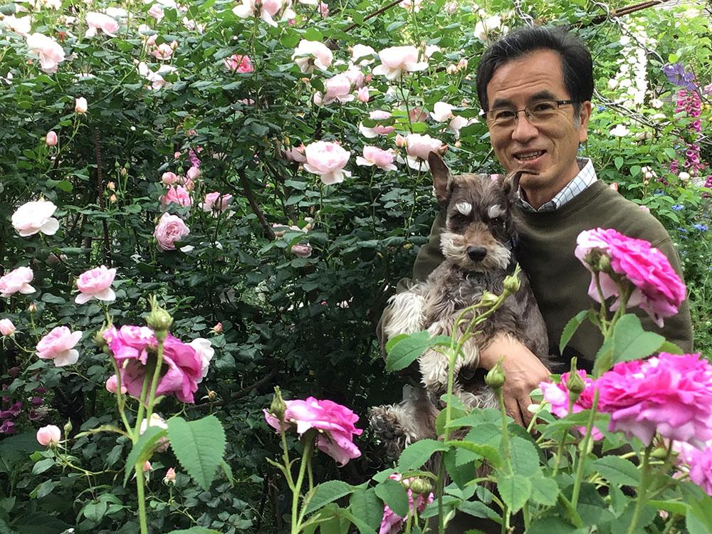 無農薬栽培のバラの庭