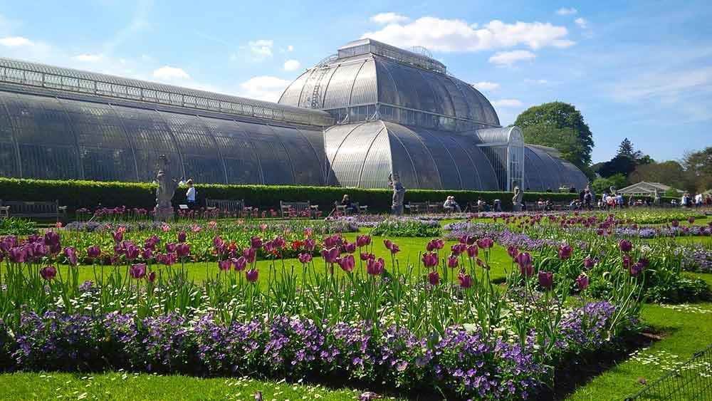 英国王立キュー植物園