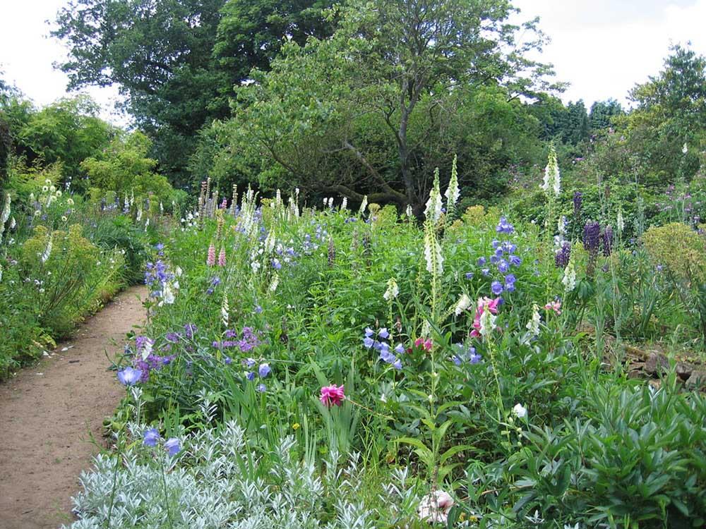 ムンステッド・ウッドの庭