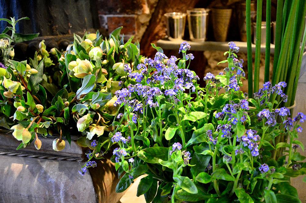 パリの花屋『アン・ジュール・ド・フルール』
