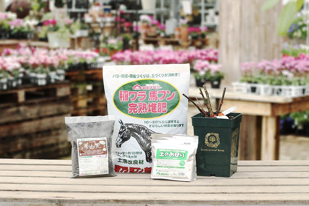 バラの庭植えセット