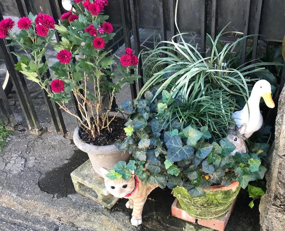 猫やアヒルの装飾品