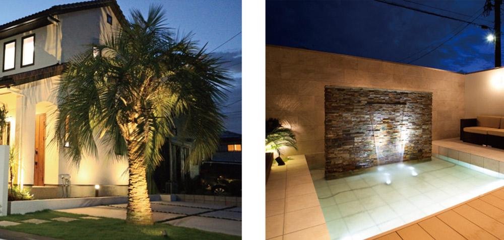 椰子の木ライティング イメージ  ウォーターライティング イメージ