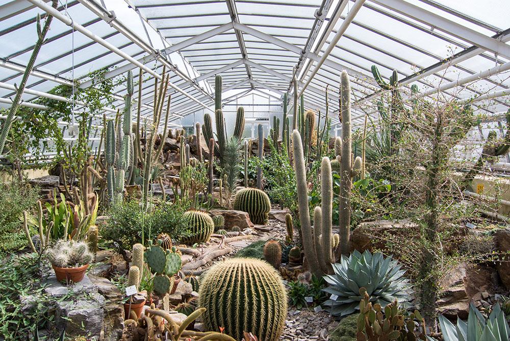 ミュンヘン・ニンフェンベルク植物園の温室
