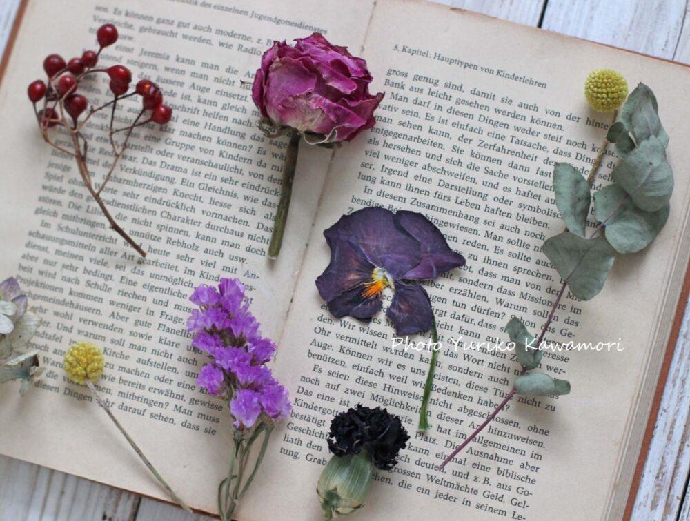 押し花とドライフラワー