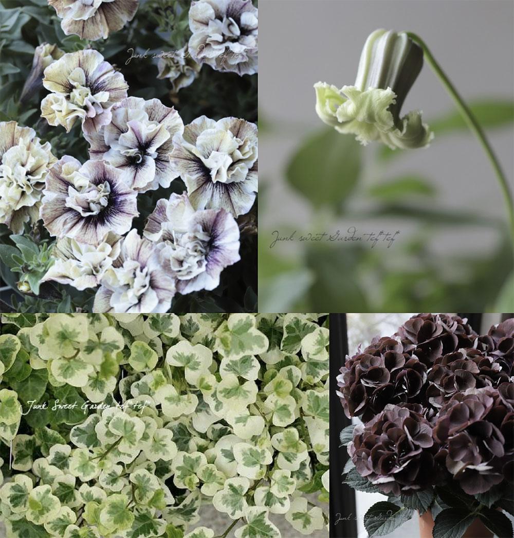 Junk Sweet Garden tef*tef*の花