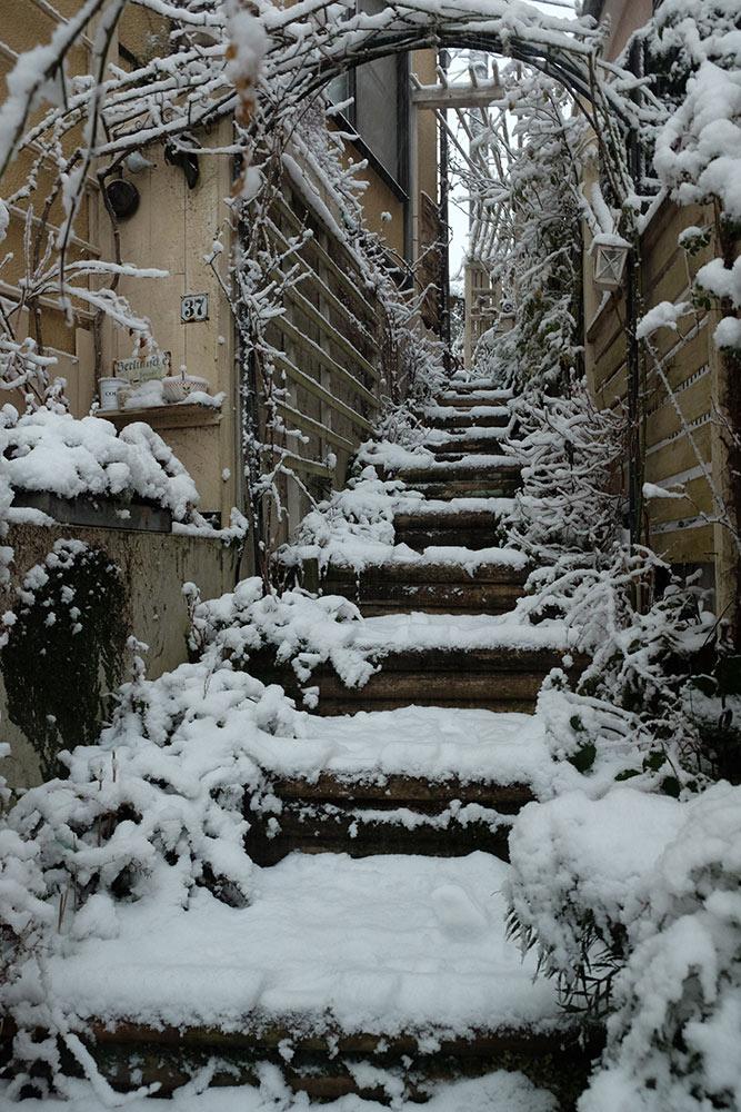 雪の階段庭