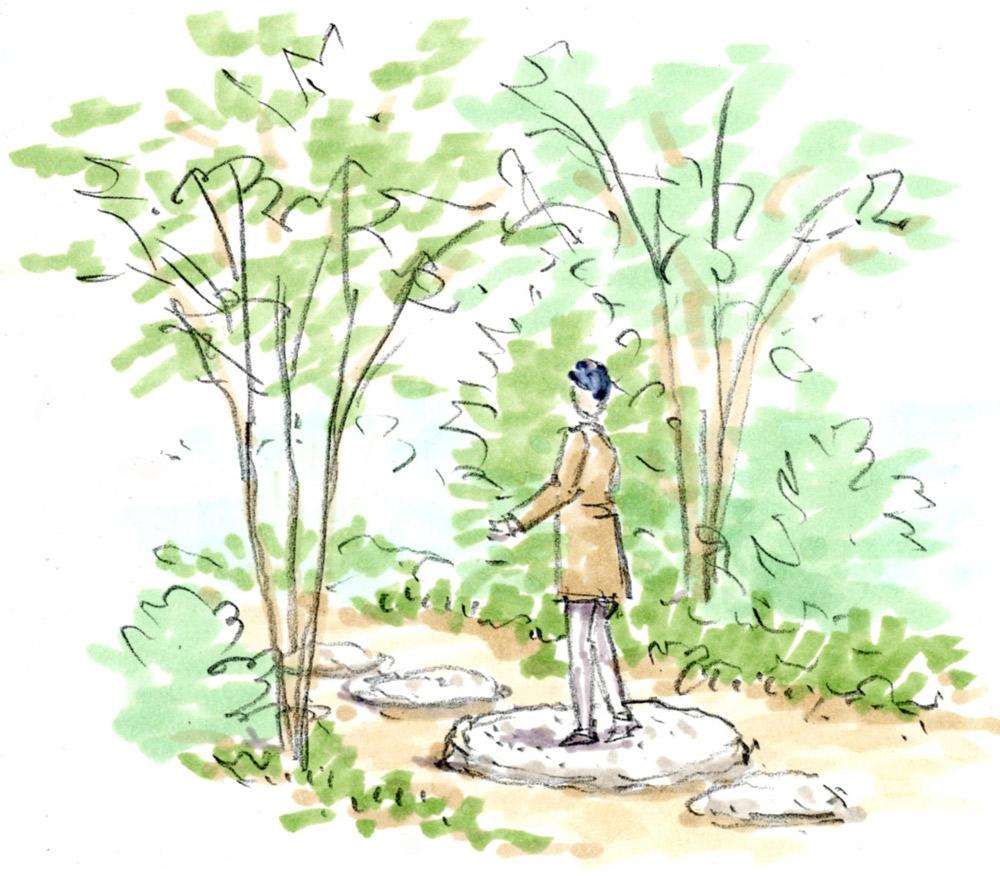 自然に触れて癒される「雑木の庭」