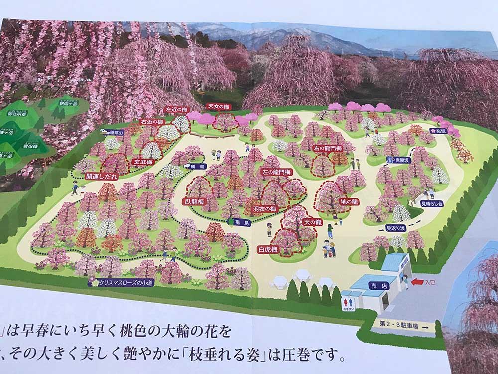 鈴鹿の森庭園