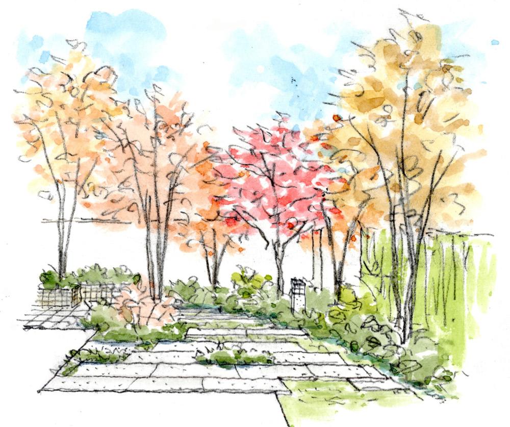 リビングから眺めた白河石の敷石ある庭