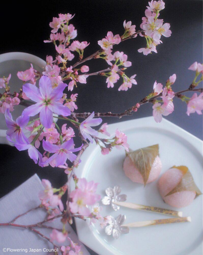 リューココリネと桜のアレンジ