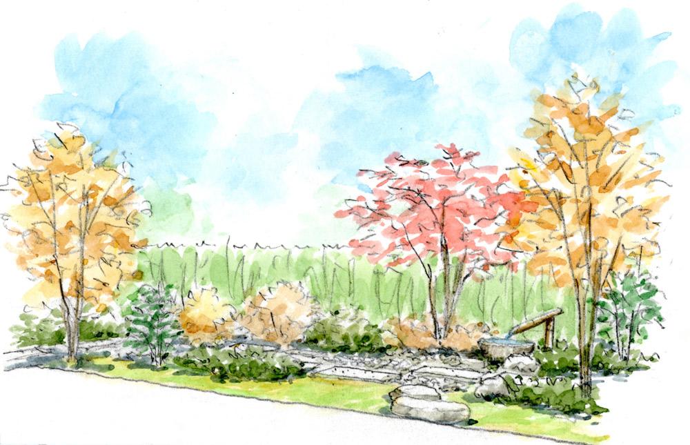 和室から眺めた延段やゴロタのある庭 コナラやシャラ、イロハモミジで黄葉、紅葉が美しい雑木の庭