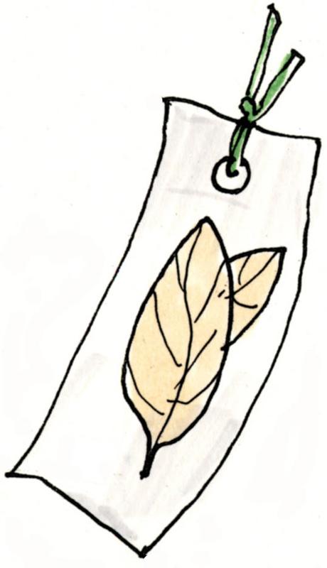 落ち葉の栞