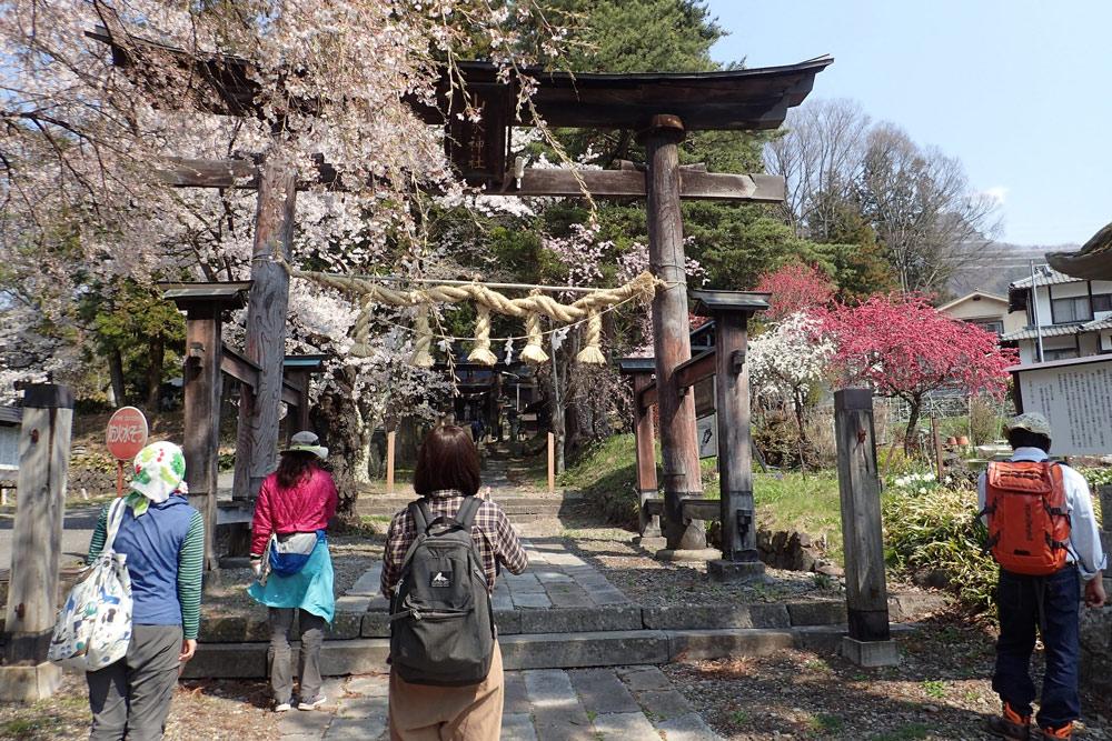 地元の神社仏閣を巡る散策