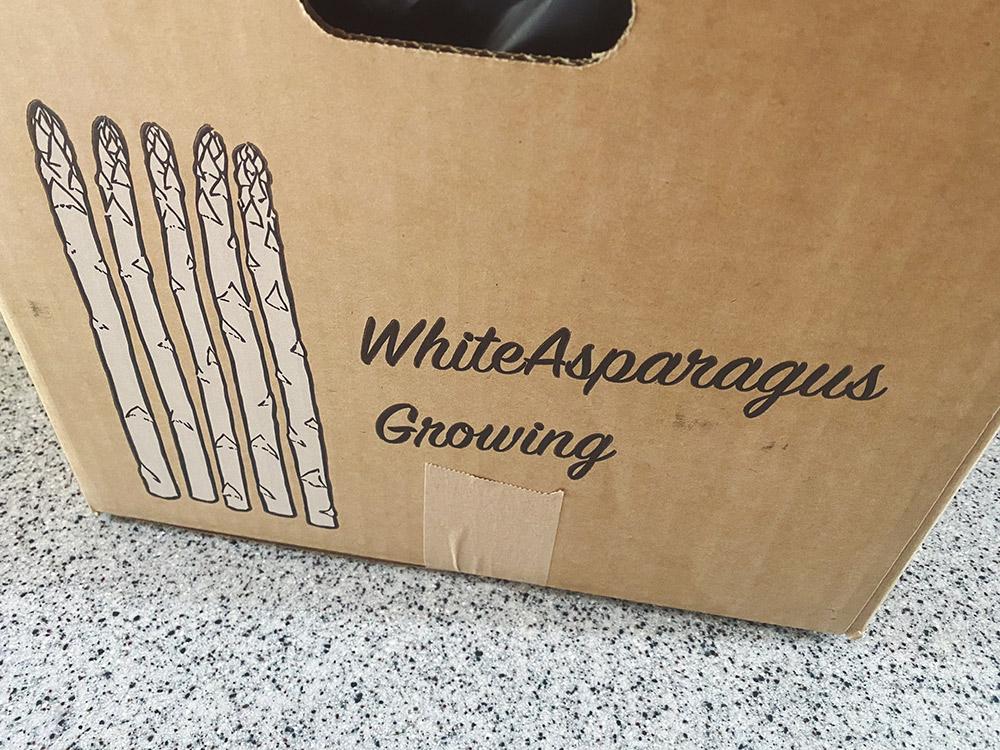 ホワイトアスパラ栽培キット