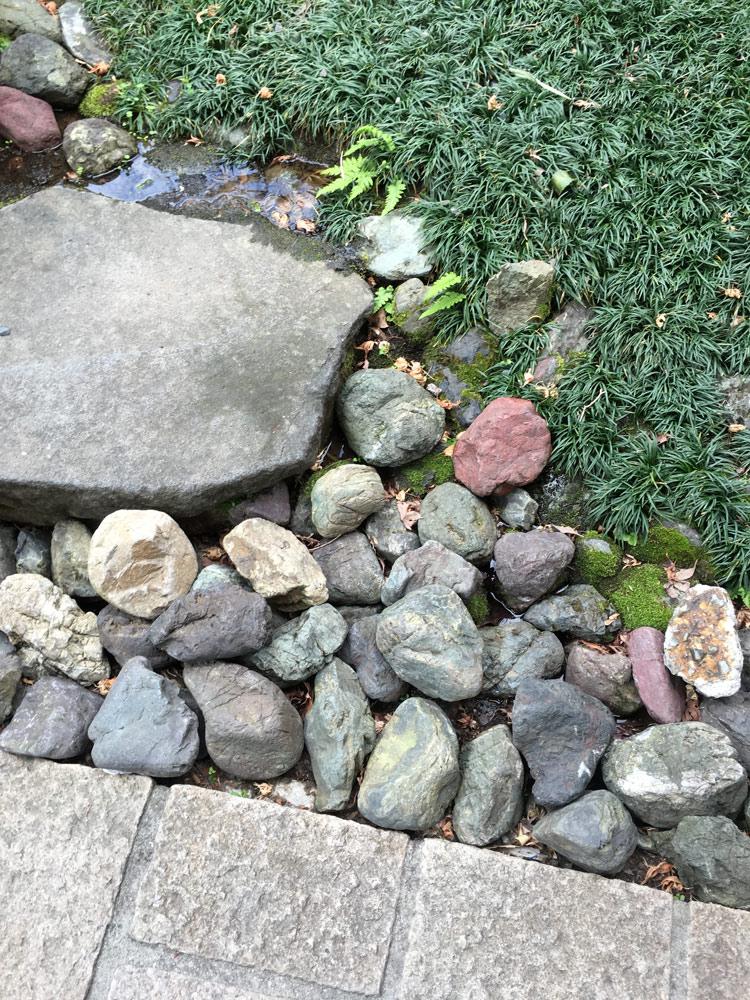 自然石の敷石やゴロタとタマリュウ Katfishsan/Shutterstock.com
