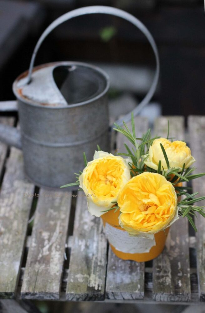 素焼き鉢のアレンジ