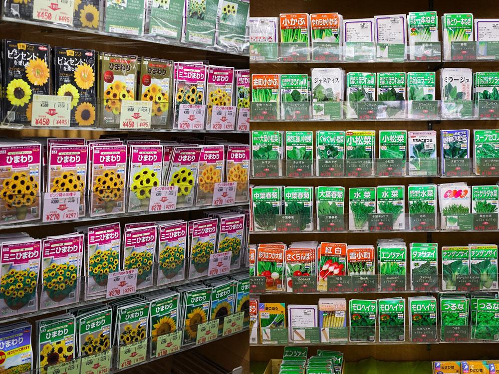 サカタのタネ ガーデンセンター横浜の種コーナー