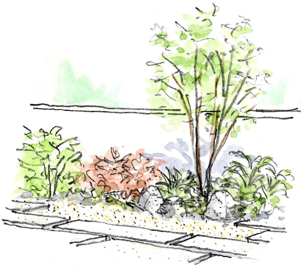 株立ちの庭木や白い敷石とサビ御影色の玉砂利で明るく景石を配置して和風感を
