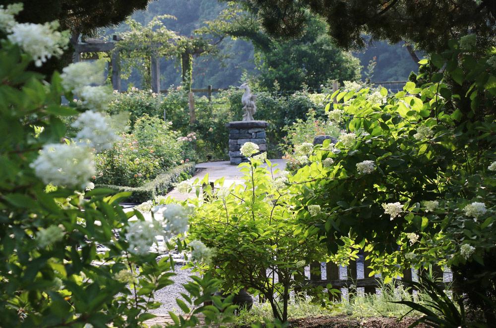 感性を磨く環境は、庭づくりに影響する