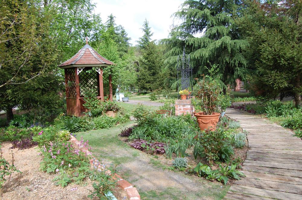 開園当時の山野草や宿根草をメインにした庭