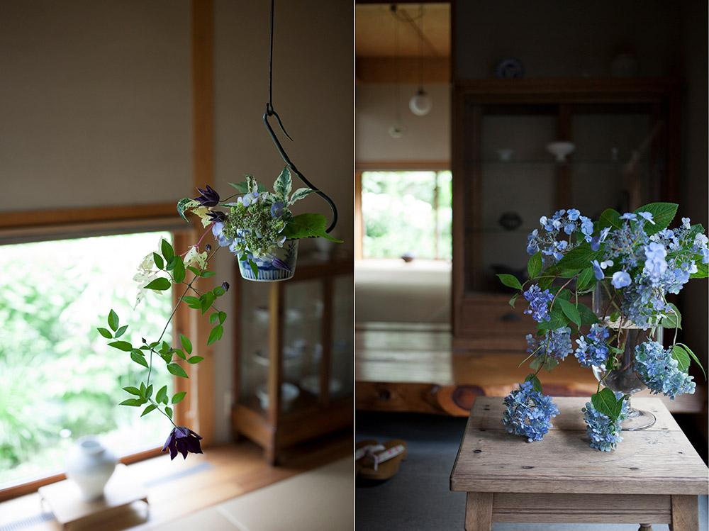 ヤマアジサイ切り花