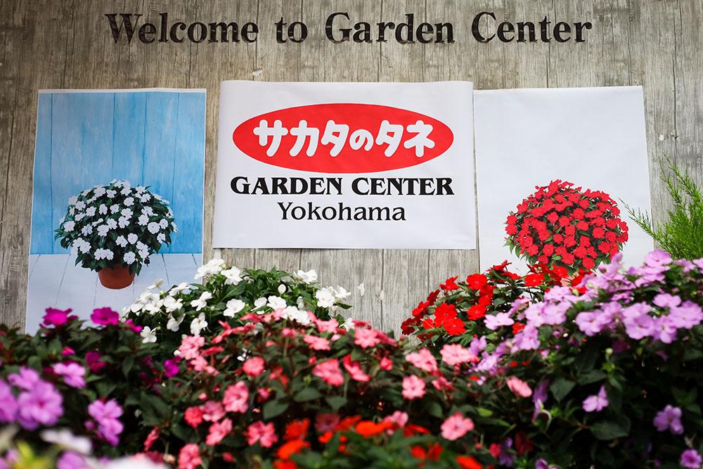 サカタのタネ ガーデンセンター横浜
