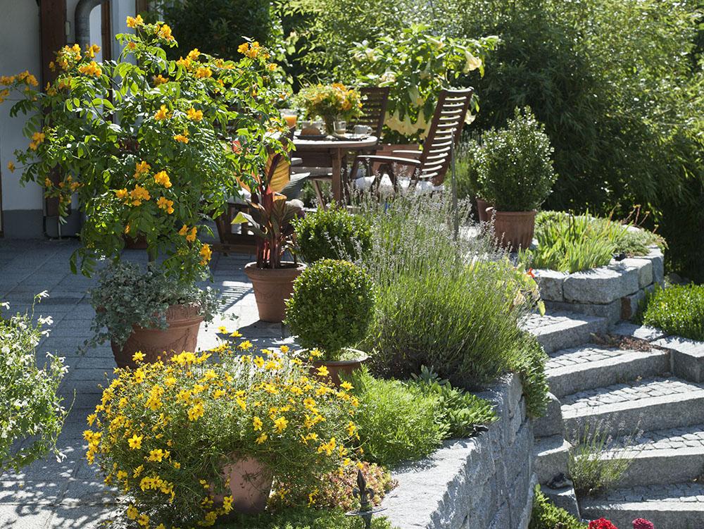地中海風ガーデン