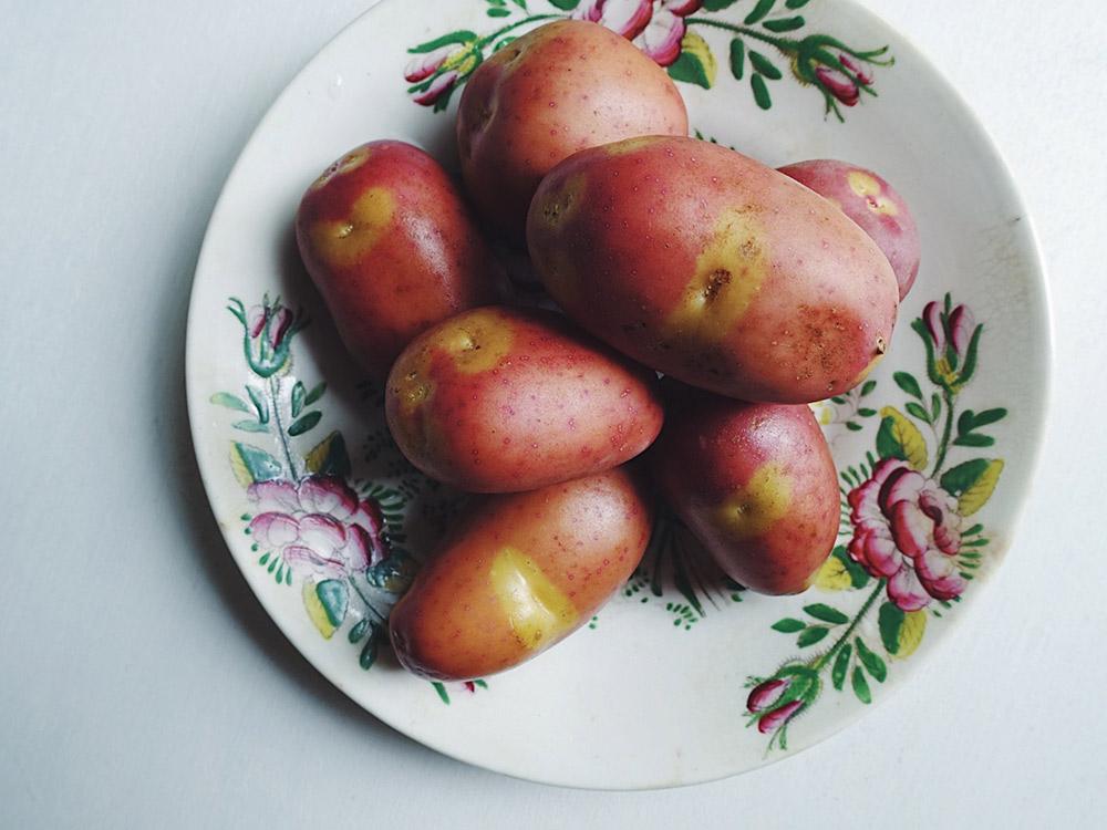 ジャガイモ インカのひとみ