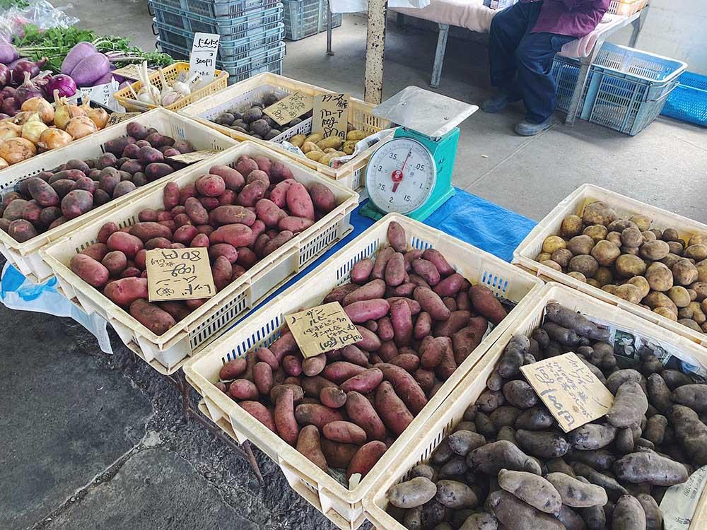いろいろな種類のジャガイモ